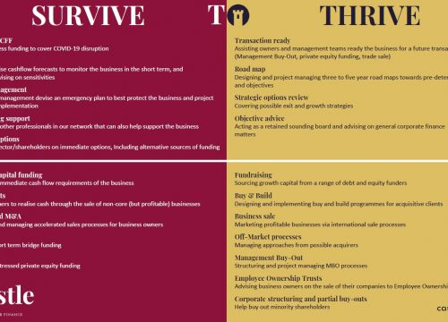 Surive to Thrive